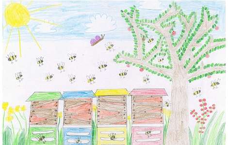 Malwettbewerb Umweltunterricht