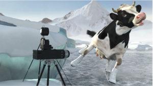 Ausgezeichneter Rechtsschutz holt die Kuh vom Eis!